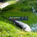 david_jones_india_trip_and_bsb_ref_phil_morris_racing_2010_2011_134
