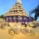 david_jones_india_trip_and_bsb_ref_phil_morris_racing_2010_2011_203