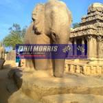 david_jones_india_trip_and_bsb_ref_phil_morris_racing_2010_2011_204