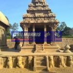 david_jones_india_trip_and_bsb_ref_phil_morris_racing_2010_2011_207