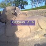 david_jones_india_trip_and_bsb_ref_phil_morris_racing_2010_2011_208