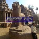 david_jones_india_trip_and_bsb_ref_phil_morris_racing_2010_2011_210
